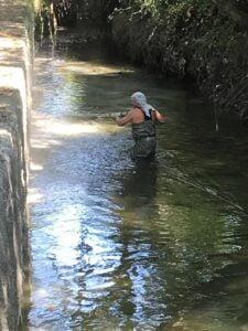 Proceso gunitado en rio